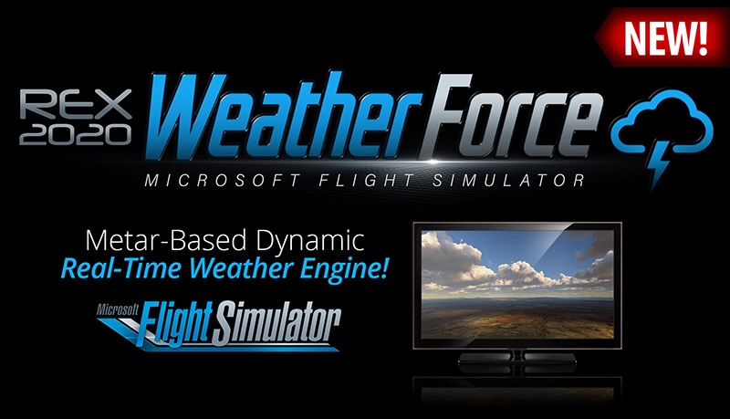 Weather Force Header Graphic